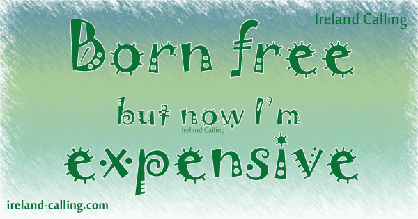 Born free, but now I'm expensive Image copyright Ireland Calling