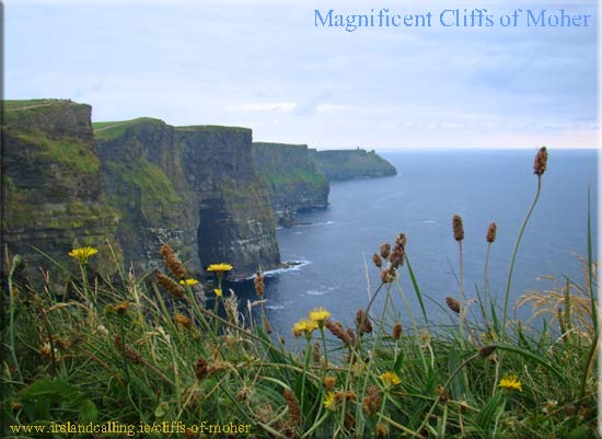The Cliffs of Moher copyright Ireland Calling