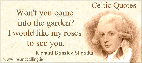 Sheridan quote. Image Copyright - Ireland Calling
