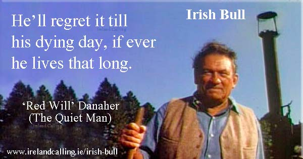 Irish Bull. He'll regret it till his dying day if he lives that long. Image copyright Ireland Calling.
