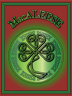 History of the Irish name MacAleese. Image copyright Ireland Calling