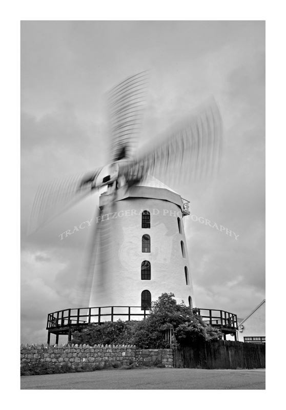 Blennerville Windmill by Tracy Fitzgerald