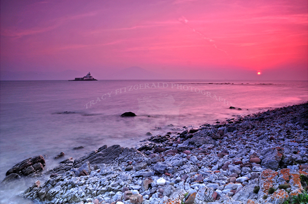 Fenit Sunset by Tracy Fitzgerald