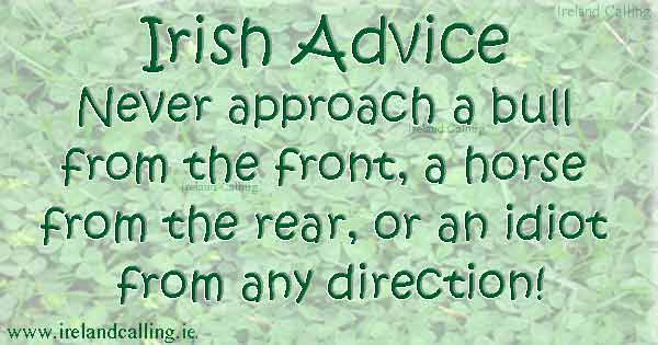 Irish jokes and toasts. Image copyright Ireland Calling