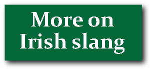 More on Irish slang