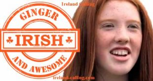 Get ready for the 2015 Redhead Convention