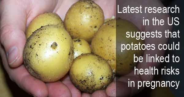 Latest research in the US suggests that potatoes could be linked to health risks in pregnancy