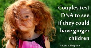 Ginger hair DNA test
