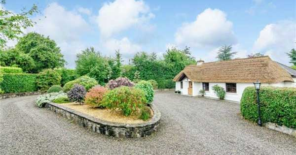Thatched cottage drive