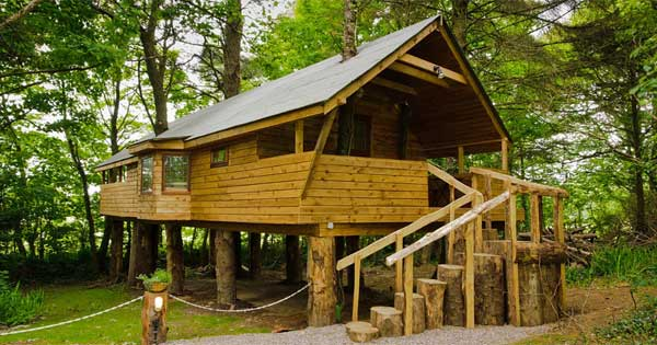 Cork treehouse is the perfect outdoor getaway
